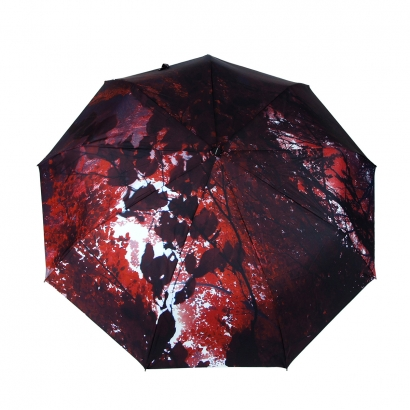 Женский зонт Gimpel 16080V