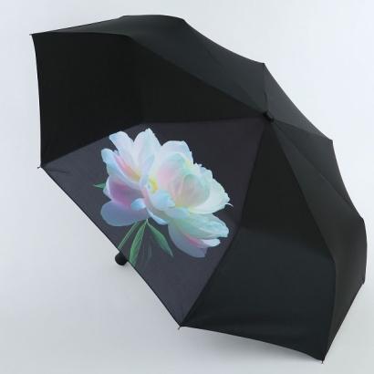 Женский зонт Nex 33941-6